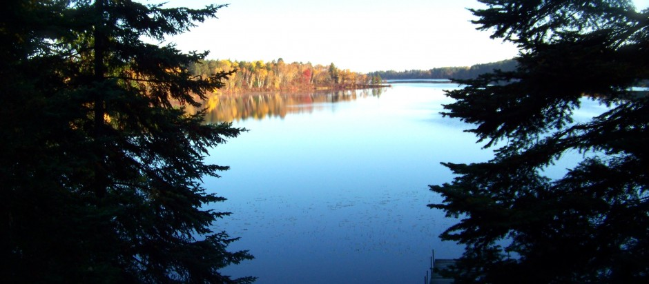 2 trees lake